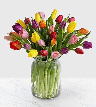 Rush of Color Assorted Tulip Flowers - 30 Stems - VASE INCLUDED