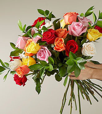 2 Dozen Long Stem Mixed Roses - VASE INCLUDED