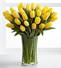 Sunshine 's Promise Tulip Bouquet - VASE INCLUDED