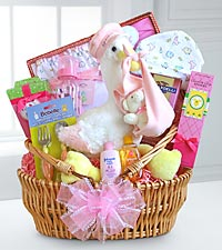 Special Stork Delivery Baby Girl Basket