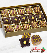 Belgian Chocolate Dipped New Baby Celebration Crispy Bites