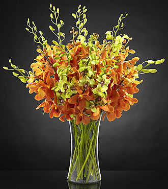 Daybreak Luxury Orchid Bouquet