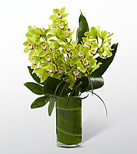 Bouquet d'orchid�es Vision Luxury - 8 tiges - VASE INCLUS