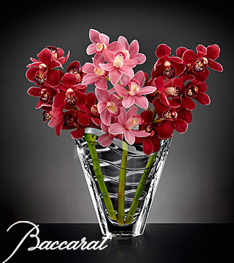 Truly Captivating Cymbidium Orchid Flowers in Baccarat Crystal Vase - 3 Stems