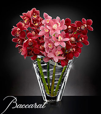 Truly Captivating Cymbidium Orchid Bouquet in Baccarat&reg; Crystal Vase - 4 Stems