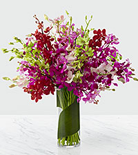 Luminous Luxury Orchid Bouquet - 30 Stems - VASE INCLUDED