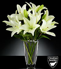 Starfields Flowering Lily Bouquet in Orrefors Crystal Arctic Vase - 4 Stems