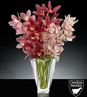 Glistening Grace Luxury Mini Cymbidium Orchid Bouquet in Orrefors Crystal Tornado Vase - 4 Stems