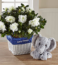 Baby Things Azalea with Plush Precious Moments ® Elephant - Boy