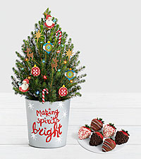 Santa 's Workshop Spruce Tree with Half Dozen Gourmet Dipped Christmas Strawberries