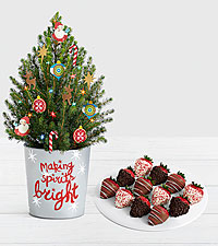 Santa's Workshop with Full Dozen Gourmet Dipped Christmas Strawberries