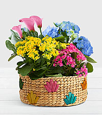 Colorful Flowering Market Garden in Colorful Basket
