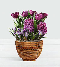Fragrant Purple Garden in Woven Lace Basket
