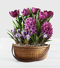 Fragrant Purple Bulb Garden in Basket with Handle