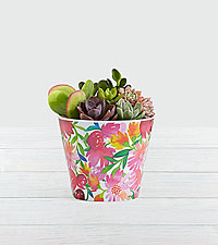 Chic Succulent Garden in Watercolor Floral Container