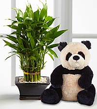 Thank My Lucky Stars Bamboo with Plush Panda Bear