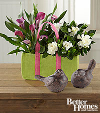 FTD ® Let Love Grow Calla Lily & Gardenia Duo by Better Homes and Gardens ® with Birds