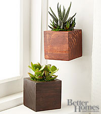 The FTD ® Rustic Riches Succulent Plant Duo by Better Homes and Gardens ®