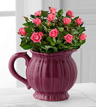The FTD Bountiful Beauty Mini Rose by Better Homes and Gardens