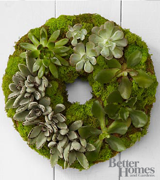 The FTD&reg; Succulent Wreath by Better Homes and Gardens&reg;