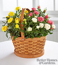 The FTD ® Rose Garden Basket by Better Homes and Gardens ®