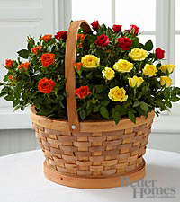 The FTD ® Blooms of Fall Rose Garden Basket by Better Homes and Gardens ®
