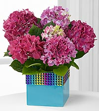The FTD ® Pick-Me-Up ® Rainbow Falls Hydrangea Plant