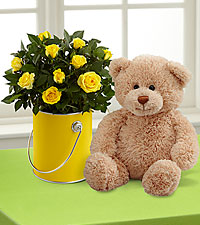 The Color Your Day with Sunshine™ Mini Rose Plant by FTD ® with Plush Bear