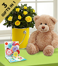 The Color Your Day with Sunshine™ Mini Rose Plant by FTD ® with Bear & Pop-up Card