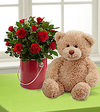 The Color Your Day with Love™ Mini Rose Plant by FTD ® with Plush Bear