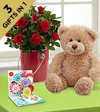 The Color Your Day with Love™ Mini Rose Plant by FTD ® with Bear & Pop-up Card