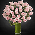 Delighted Luxury Rose Bouquet - 48 Stems of 24-inch Premium Long-Stemmed Roses - VASE INCLUDED