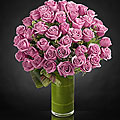 Sensational Luxury Rose Bouquet - 48 Stems of 24-inch Premium Long-Stemmed Roses - VASE INCLUDED