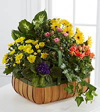 The FTD&reg; Gentle Blossoms&trade; Basket