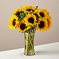 Endless Summer Sunflower Bouquet - VASE INCLUDED