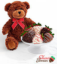 Teddy Bear & Half Dozen Valentine 's Strawberries