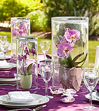 The FTD ® Dramatic Garden™ Centerpiece