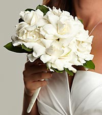 The FTD ® Champagne Dreams™ Bouquet