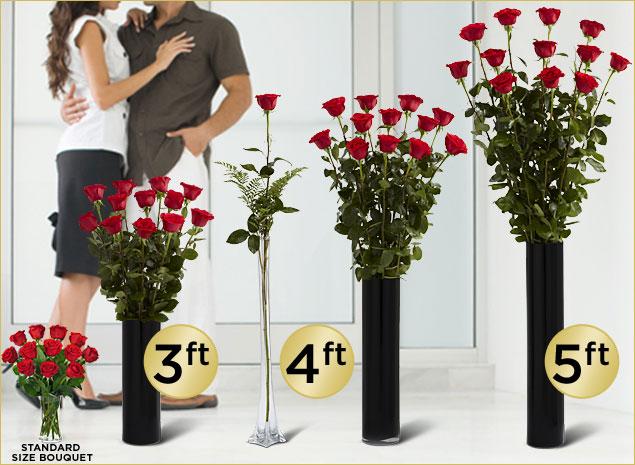 Ultimate Rose 5 Ft Long Stem Roses Delivered By FTD