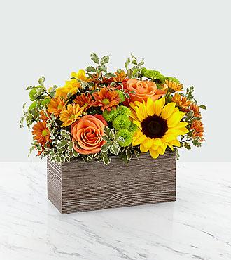 Happy Harvest Garden™