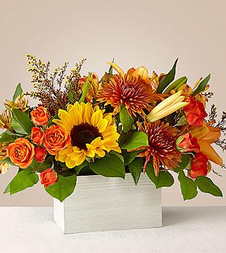 BouquetGolden Hour