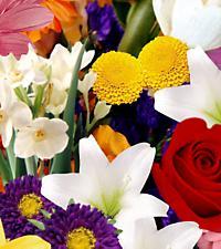 Le bouquet créé par un fleuriste FTD®