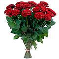 Bouquet of Vinous Roses 'Classics'