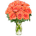 Bouquet of Orange Roses 'Bliss'