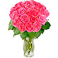 Bouquet of Pink Roses 'Rosy Reveries'