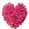 'Heart' Arrangement of Roses