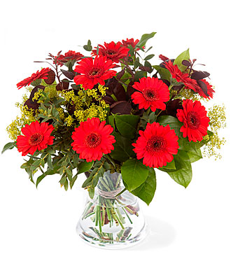 Gerbera Bouquet red with greens exclusive vase