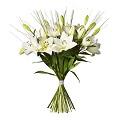 Bouquet Dashing Lilies