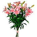 Bouquet Pink Lillies