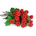 One Dozen Medium Stemmed Red Roses